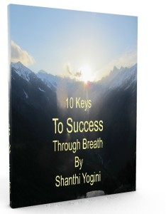 10 keys to success himalayas 3d